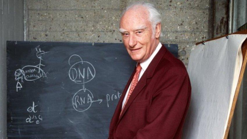 Crick si valoarea ADN-ului