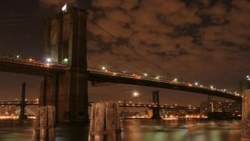 Podurile lumii