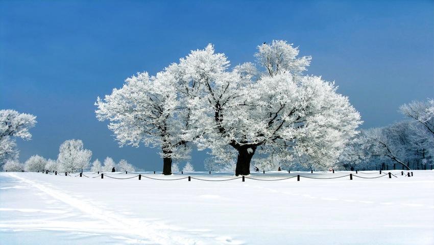 Ultima bruma si visul noptilor de iarna